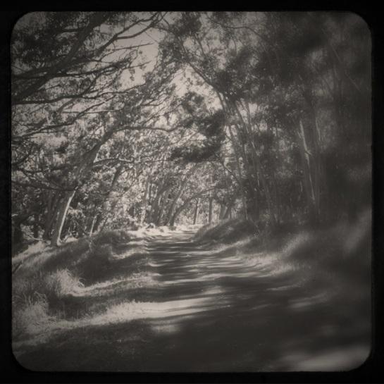 20120122-135043.jpg