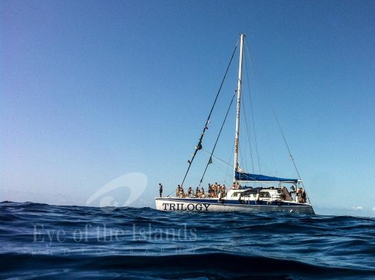 sailing, Trilogy, watershot, hawaii